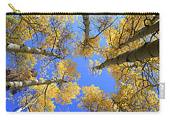 Aspens Skyward Carry-all Pouch