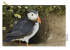 Atlantic Puffin At Burrow Skomer Island Carry-all Pouch by Sebastian Kennerknecht