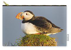 Atlantic Puffin Iceland Carry-all Pouch by Peer von Wahl