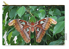 Carry-all Pouch featuring the photograph Atlas Moth #2 by Judy Whitton