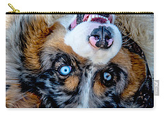 Australian Shepherd Carry-all Pouch
