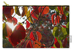 Autumn Dogwood In Evening Light Carry-all Pouch by Michele Myers