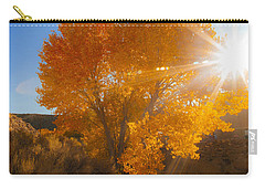 Autumn Golden Birch Tree In The Sun Fine Art Photograph Print Carry-all Pouch