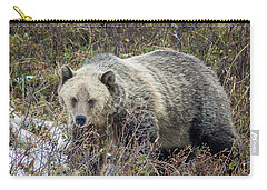 Carry-all Pouch featuring the photograph Autumn Grizzly by Jack Bell