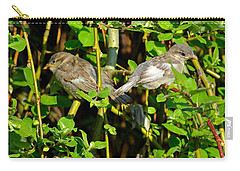 Babies Afraid To Fly Carry-all Pouch by Frozen in Time Fine Art Photography