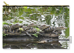 Baby Alligators Carry-all Pouch by Dan Sproul