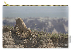 Baby Bighorn In The Badlands Carry-all Pouch