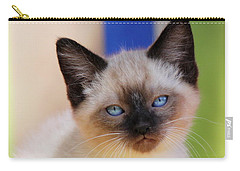Carry-all Pouch featuring the photograph Baby Blues by Melanie Lankford Photography
