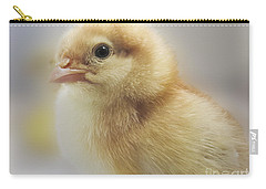 Baby Chicken Carry-all Pouch