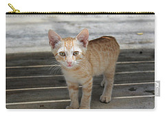 Baby Kitty Carry-all Pouch