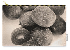 Baby Kiwi Distressed Sepia Carry-all Pouch by Iris Richardson