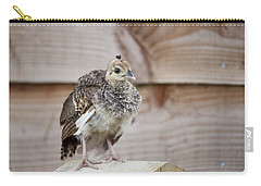 Baby Peacock Carry-all Pouch