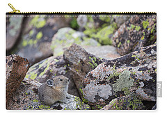 Carry-all Pouch featuring the photograph Baby Pika by Michael Chatt