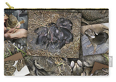 Baby Rabbits Carry-all Pouch