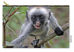 Baby Red Colobus Monkey Carry-all Pouch by Tony Murtagh