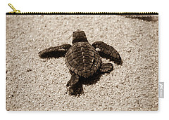 Carry-all Pouch featuring the photograph Baby Sea Turtle by Sebastian Musial