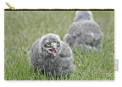 Baby Snowy Owls Carry-all Pouch