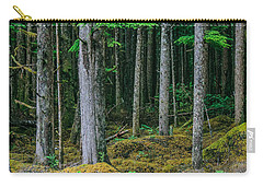 Inside View Backroad Forest Carry-all Pouch