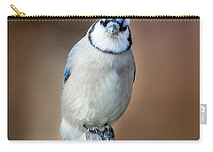 Backyard Birds Blue Jay Carry-all Pouch by Bill Wakeley