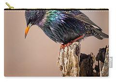 Backyard Birds European Starling Carry-all Pouch by Bill Wakeley