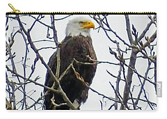 Carry-all Pouch featuring the photograph Bald Eagle  by Lizi Beard-Ward