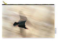 Bald Ibis Carry-all Pouch