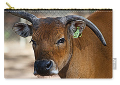 Banteng Girl Carry-all Pouch by Miroslava Jurcik