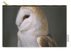 Barn Owl Carry-all Pouch by David Porteus