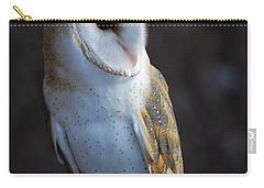 Barn Owl Carry-all Pouch by Sharon Elliott