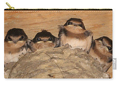 Barn Swallow Chicks 2 Carry-all Pouch