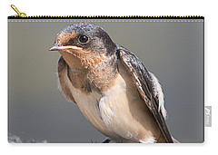 Carry-all Pouch featuring the photograph Barn Swallow On Rope I by Patti Deters