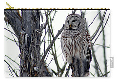 Barred Owl 2 Carry-all Pouch by Steven Clipperton