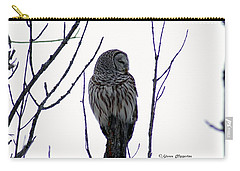Barred Owl 3  Carry-all Pouch by Steven Clipperton