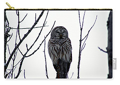 Barred Owl 4 Carry-all Pouch