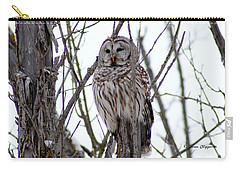 Barred Owl Carry-all Pouch by Steven Clipperton