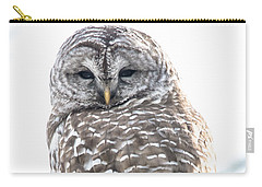 Barred Owl2 Carry-all Pouch by Cheryl Baxter