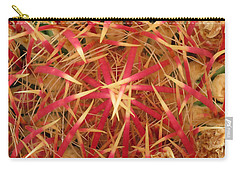 Barrel Cactus Carry-all Pouch by Laurel Powell