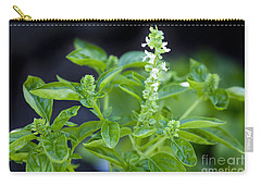 Carry-all Pouch featuring the photograph Basil With White Flowers Ready For Culinary Use by David Millenheft