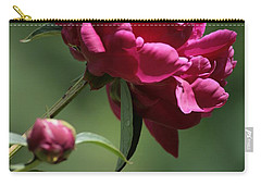 Basking In The Sun Carry-all Pouch by Barbara Bardzik