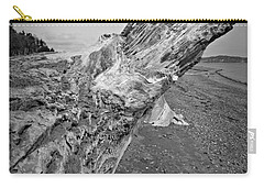 Beach Driftwood View Carry-all Pouch