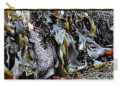 Beach Treasures  2 Carry-all Pouch