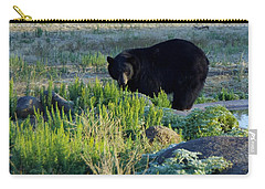 Bear 3 Carry-all Pouch