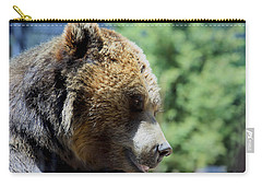 Bear Carry-all Pouch by Chris Thomas