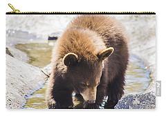 Bear Cub Carry-all Pouch