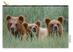 Bear Cubs Peeking Out Carry-all Pouch by Myrna Bradshaw