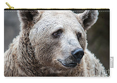 Bear Necessities Carry-all Pouch by Ray Warren