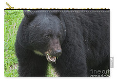 Carry-all Pouch featuring the photograph Bear by Rod Wiens