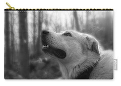 Bear Tooth Not Camera Shy Carry-all Pouch