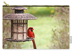 Beautiful Cardinal Carry-all Pouch by Trina  Ansel
