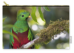 Beautiful Quetzal 1 Carry-all Pouch